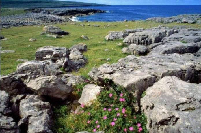 Parque Nacional de Burren é um doslugares mágicos da Irlanda