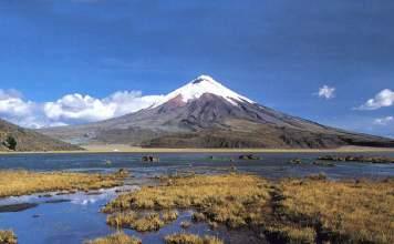 Quito capa