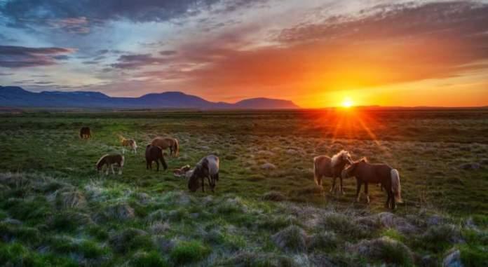 Islândia é um dos destinos para viajar em Junho 2018