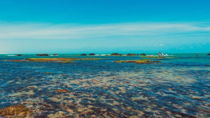 Praia de Flecheiras no Ceará