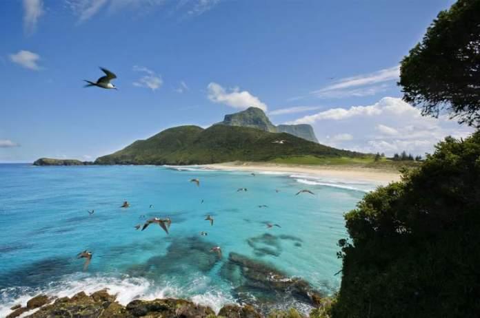 Lord Howe Islands é um dos destinos incríveis ao redor do planeta