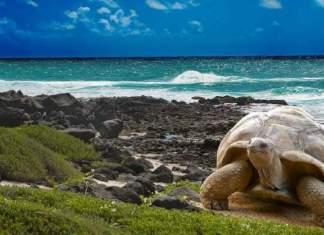 praias mais bonitas do Equador capa