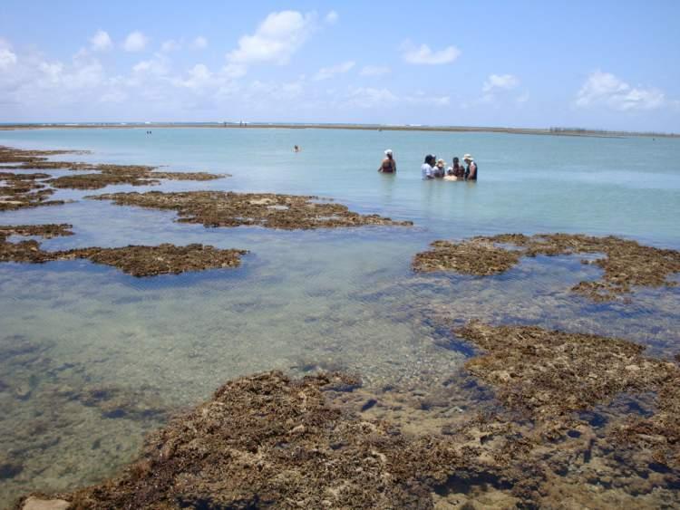 Coroa Grande é uma das melhores Praias de São José da Coroa Grande