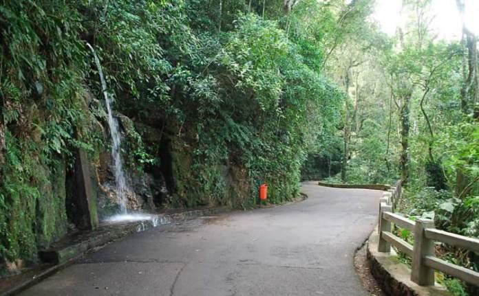 O que fazer no Rio de Janeiro: Visitar o Parque Nacional da Tijuca