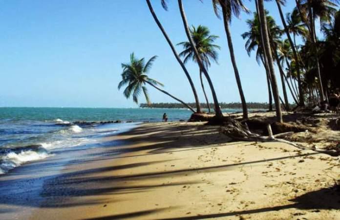 Praia de Camboa é uma das melhores Praias de Ipojuca