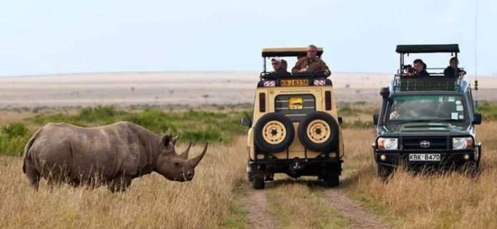 Safári na África na Reserva Masai Mara