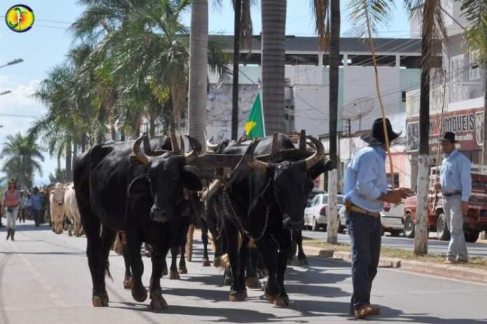 Festa Rei do Boi em Itacarambi Minas Gerais