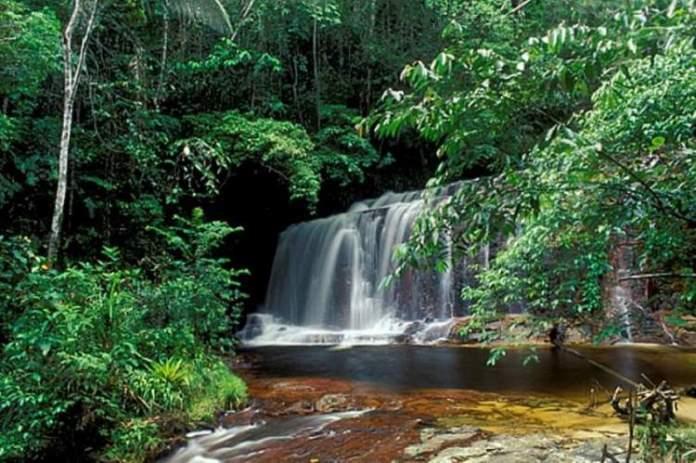 Parque Nacional da Serra do Divisor no Acre