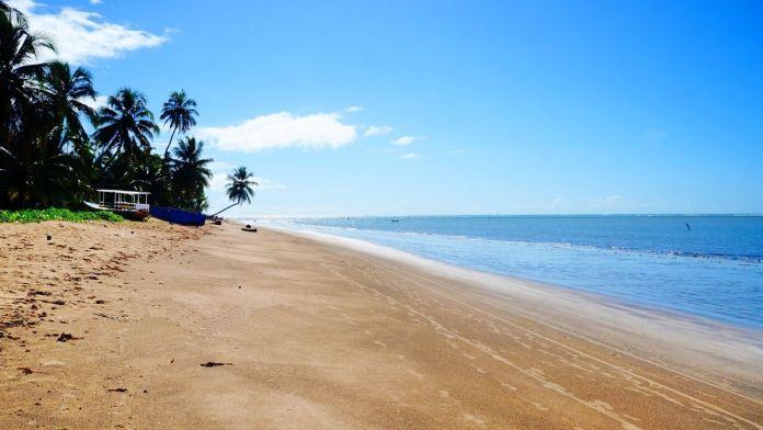Maravilhosa praia de Bitingui com areia branca e palmeiras perto de Barreira do Boqueirão, São Miguel dos Milagres, Alagoas.
