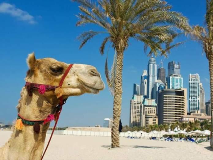 Melhor época de ir para Dubai e evitar o verão