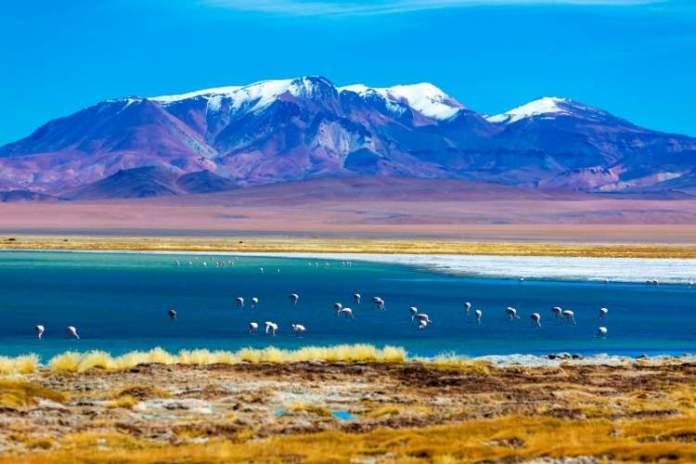 Melhor época para ir ao Chile com foco no Deserto do Atacama