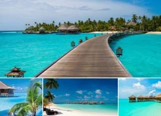 coisas que você precisa saber antes de viajar para as Ilhas Maldivas
