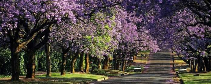 Pretória África do Sul
