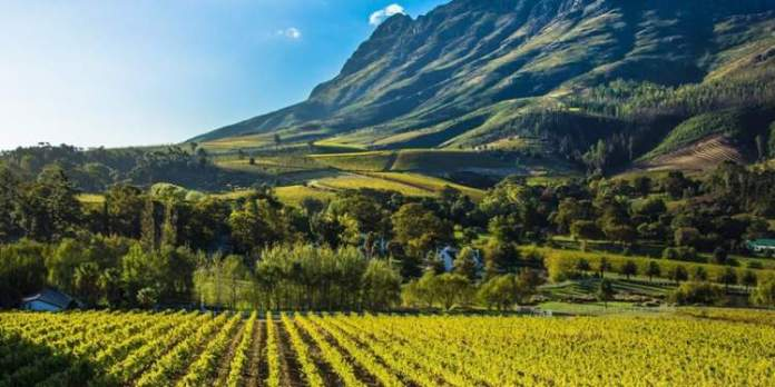 Stellenbosch África do Sul