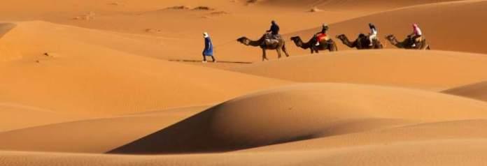 Al Ain Desert Safari Emirados Árabes Unidos