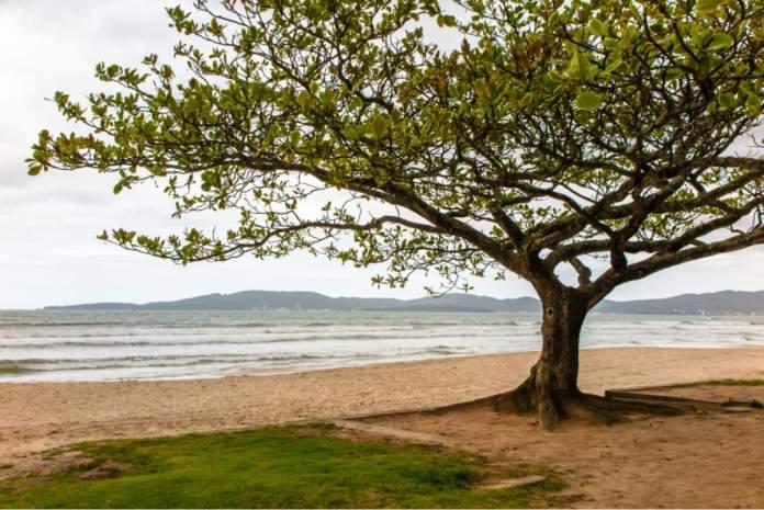 Praia do centro em Itapema - Santa Catarina