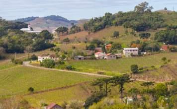 Vale dos Vinhedos - Serra Gaúcha