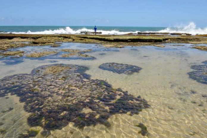 Piscina natural na praia de Sibaúma, Tibau do Sul - RN