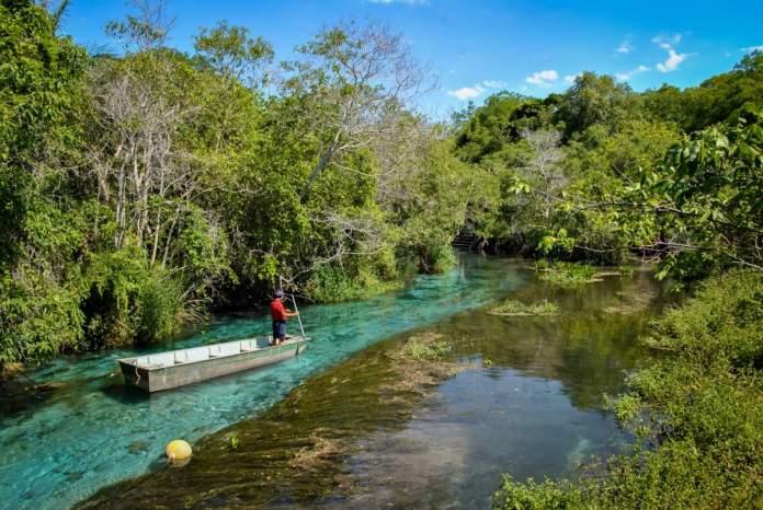 Rio Sucuri em Bonito - Mato Grosso do Sul