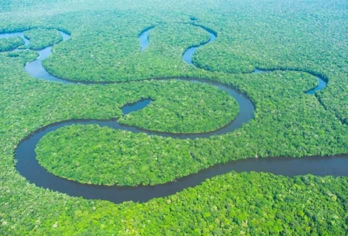 Parque Nacional do Jaú é um dos incríveis lugares para visitar na Amazônia