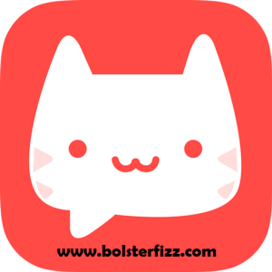 MeowChat For PC