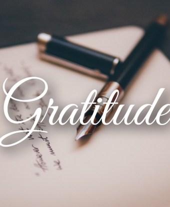 Yogi Journal: Gratitude