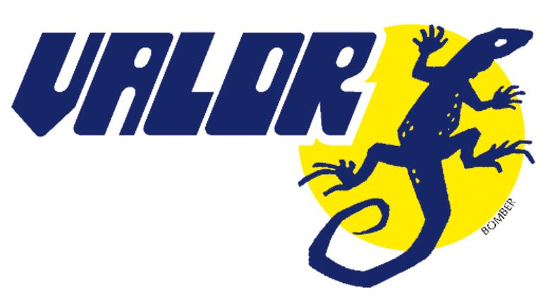 Valor Corporate Logo design 1996