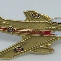 PIN – Golden Hawks