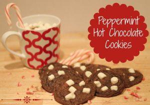 Peppermint-HotChocolate-Cookies-1024x719