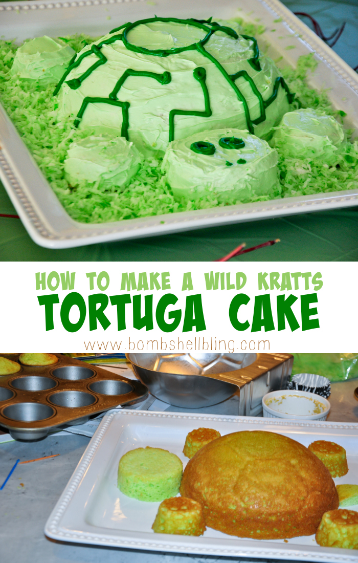 How to make a Wild Kratts tortuga cake.  Simple!