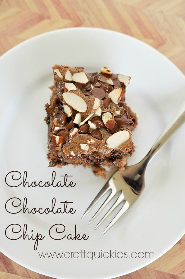 This family recipe for Chocolate Chocolate Chip Cake is amazingly moist and portable! Perfect for picnics and events!