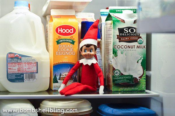 Elf on the Shelf Ideas-11