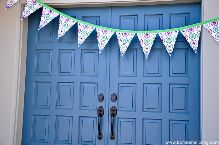 Wild Kratts Birthday Party door banner on blue door