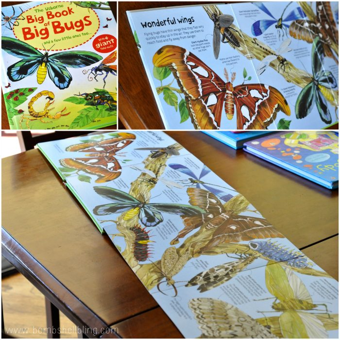 books for kids The Big Book of Bugs collage