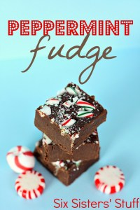 peppermint-fudge2-700x1050