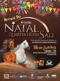 XI LEILÃO NATAL QUARTER HORSE SALE