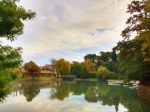 lake-in-park-by-apt