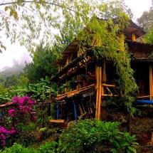 Jardin Hostel