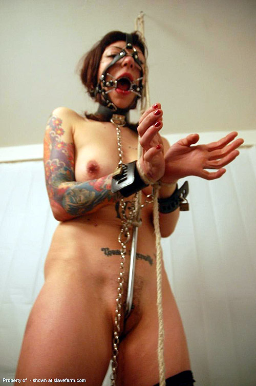 Bdsm real life slave women remarkable, this