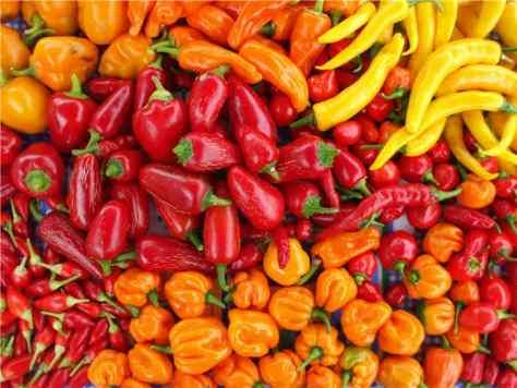 Metabolism_Foods_Chillies