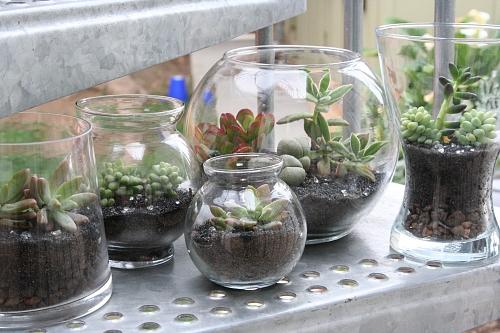Dez ideias para reaproveitar frascos de vidro na decorao
