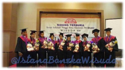 boneka wisuda teddy bear medium