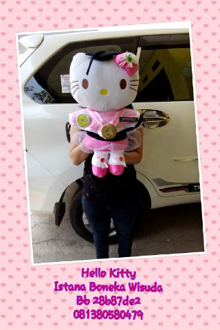 bosku kitty big1