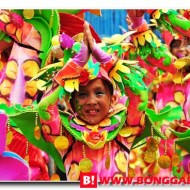 History of Pintaflores