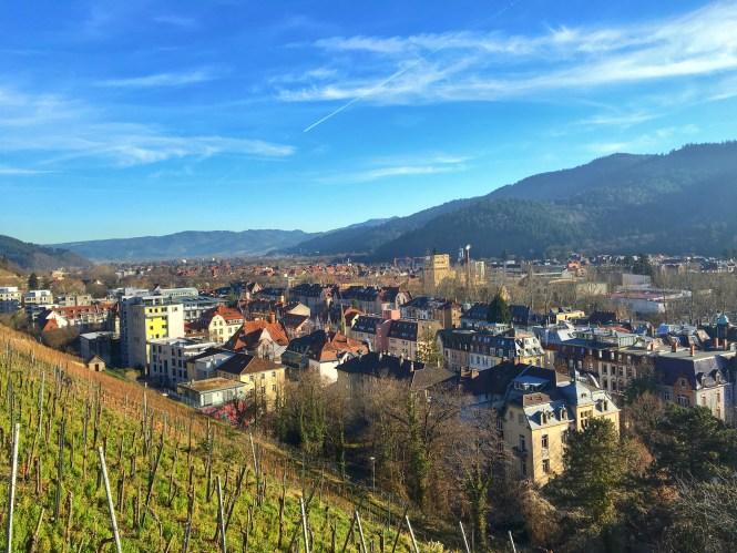 Freiburg Germany Vineyards Wine Region City View
