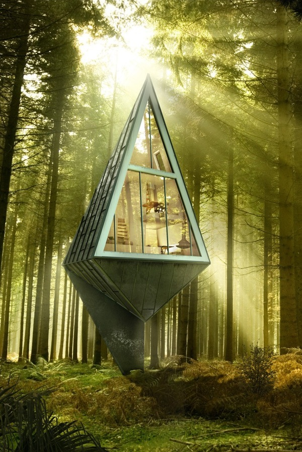 Modern Forest Homes (2)