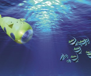 VAS 525 60 Yellow Submarine (7)