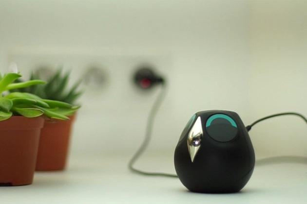 Ulo Is A Pet Owl Surveillance Camera With Attitude (1)