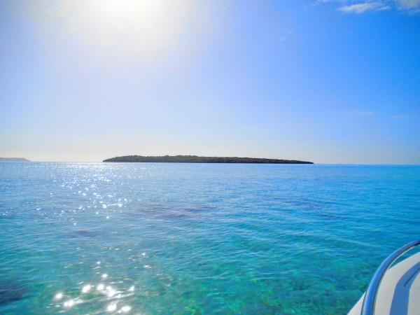Ile aux Aigrettes, Mauritius : Ile Maurice