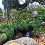 Orlando Florida Walt Disney World Avatar